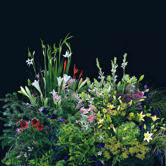 amana-flowers.jpg